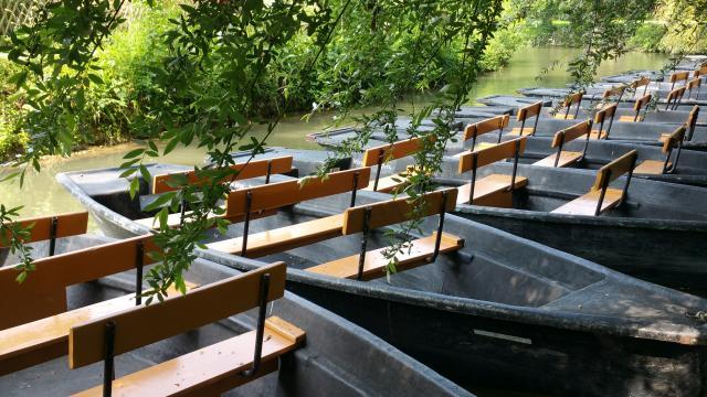 Chasse aux trésors en barque dans le Marais Poitevin