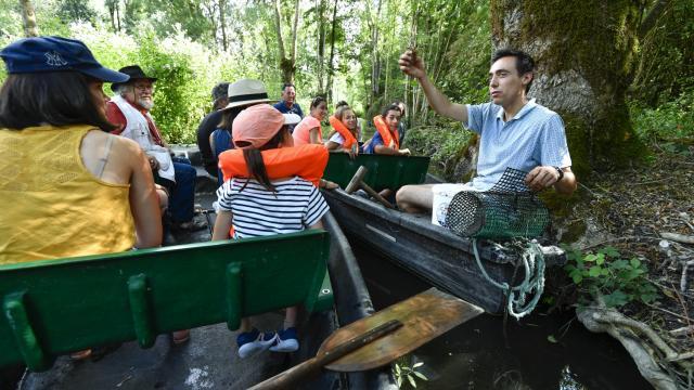 Découverte du Marais Poitevin en barque