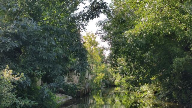 Le Marais de la Garette